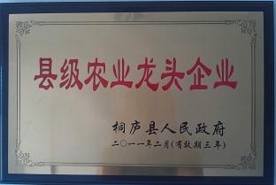 县级农业龙头企业